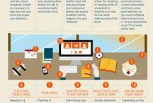 Study and Productivity