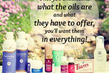 young living oils / by Maurita Wilkerson