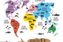 Kontynenty i zwierzęta