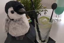 Penguin Fizz on tour  / Penguin Fizz starts his Cocktail & Food Tour He was born on 16.09.2017 and his first Cocktail was a GinFizz so he got his beautyfull name