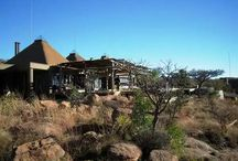 bush lodge architect