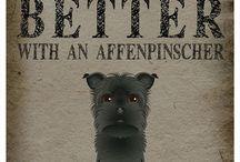 Life is Better With an Affenpinscher / by Ann Westphal