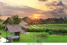Umalas / Come to discover Umalas, a lovely place between Seminyak and Canggu! For more information go visit: http://en.balijetaime.com/newblog/umalas-a-jewel-for-your-holidays/