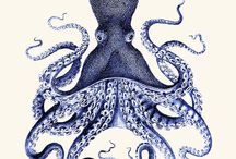 Design: Illustration