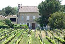 Château Trapaud / Visite du vignoble et des chais au Château Trapaud à Saint Emilion Bordeaux Réservez avec winetourbooking.com