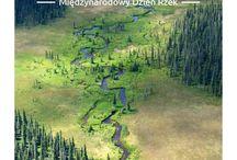 Światowy Dzień Rzek