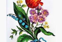 Kwiaty baroku flowers coloring book / Kwiaty baroku flowers coloring book kolory mistrzów