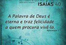 Bíblia♥