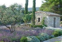 LS_Provence