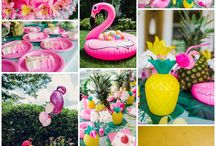 Go Flamingo!