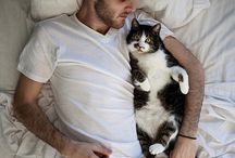 men with cats / Men with cats ^_^
