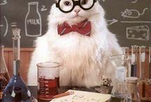 la química es divertida =P