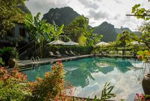 Cool pools, to dip your toes into / A lovely pool is surrounded by greenery and flowers and heading to the spectacular limestone mountains of Tam Coc.