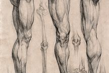 art reference LEGS