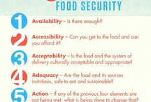 Hunger / Facts about Hunger and Food Security / by Tufts Center for Global Public Health