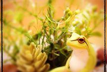 L.*蛙 (カエル 返る 還る 飼える 買える 帰る変える 買える替える 代える)