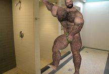 [Buster-Furry] Bodybuilder Hairy Muscle Bear / Bodybeef model 'Buster' - Visit http://www.bodybeef.com/studios/buster---premium-sets for Buster's nude photo sets!