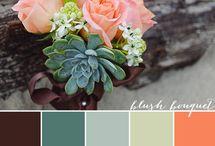 Color Inspiration / by Amanda Zambrano
