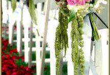 weeding ceremonie rouge