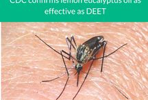 Insect Repellent - Shared by Natural Options Aromatherapy / Insect Repellent | Repellents | Natural Repellent | Mosquito Repellent | Natural Options Aromatherapy