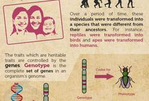 INFO BIOLOGY