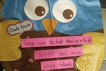 Kindergarten Owls / by Kindergarten Night Owls