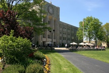 Campus Shots / by St. John's Alumni