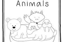 MFW - wild animals
