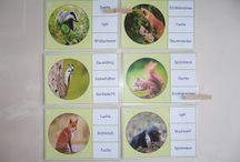 "Ideenreise: Miniklammerkarten ""Waldtiere"""