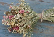 Dried flowers revisited