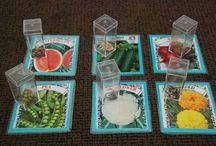 Montessori botany