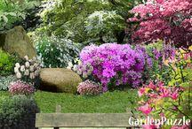 Zawsze ogród