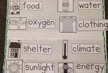 Science for year 1