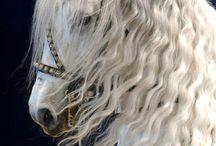 Equestria / horses,ponies,pegasus',unicorns / by Zoe Nicole