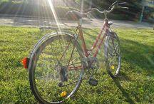 Biciclete fara Pereche / Biciclete de toate varstele, tipurile si marimile, reconditionate tehnic si estetic. Odata readuse la viata, frumoasele noastre pornesc in cautarea unei noi perechi.