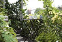 Décoration extérieur - jardin - terrasses