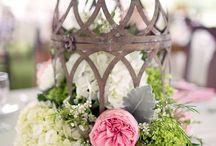 Bird cage flower