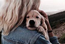 cute + dogs