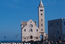 WWW.TRANI.BIZ il portale di Trani / WWW.TRANI.BIZ il portale di Trani