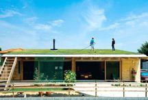屋上緑化/草屋根