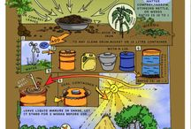 Permaculture infographs