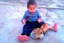 Pilavını Tavuk Yiyen Çocuk