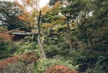 HAARKON IN JAPAN