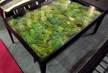 moss table top