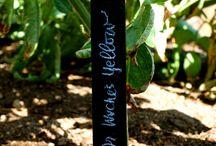 Creatrix: Garden & Outdoor Inspiration