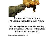 Ann Arbor Halloween 2013
