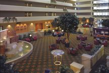 UP Springfield / University Plaza Hotel and Convention Center in the heart of downtown Springfield in the Jordan Valley Park neighborhood, this Missouri State hotel is surrounded by great restaurants, lounges, and coffee shops.
