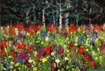 colorado wild flowers / native plants