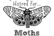my giant moth phobia / Enough said !