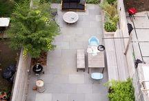 Backyard / by Amy H